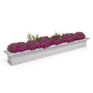 Yorkshire 8 foot window box with pink flowers
